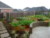 larsen-backyard-landscape-friendswood-24