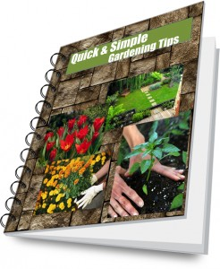 Click here to download the gardening tips ebook