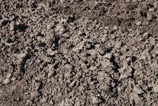 black-clay
